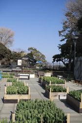 2012enoshima12.jpg