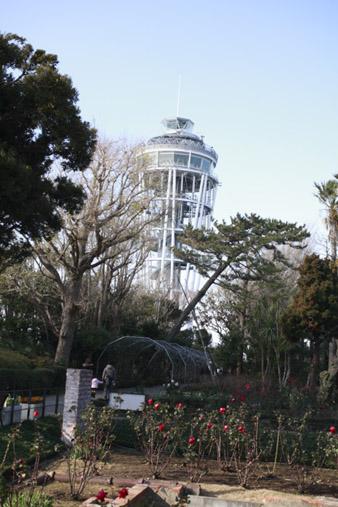 2012enoshima25.jpg
