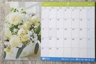 ESS20127.jpg