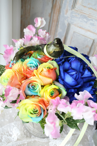 bluerose&rainbow.jpg