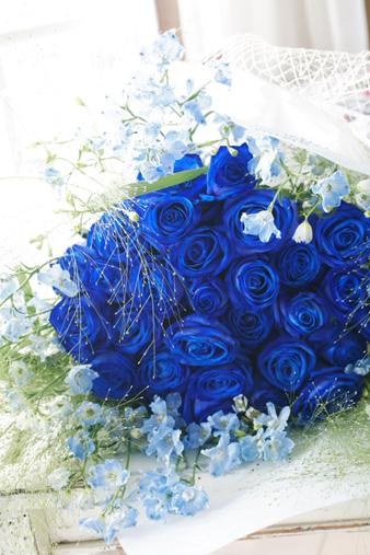 bluerose7.jpg