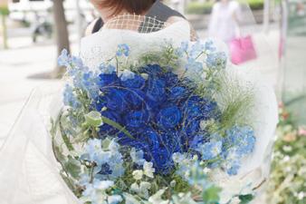 bluerose8.jpg