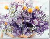 floralhealing2.jpg