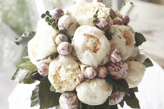 iceflowershakuyakushiro2.jpg
