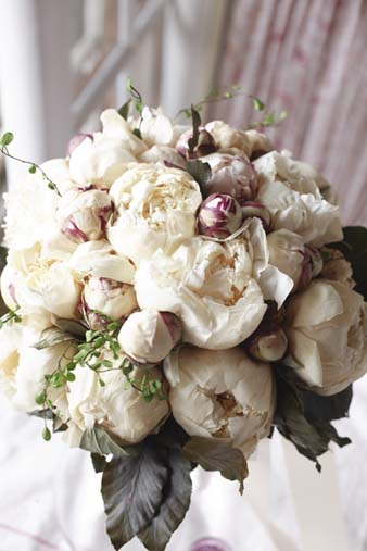 iceflowerwhitepiony2.jpg