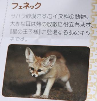 inogashira4.jpg