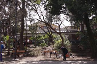 inogashira6.jpg