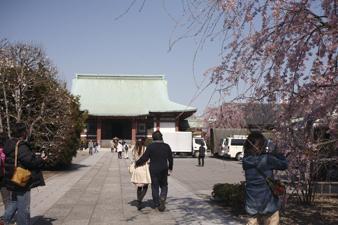 kichijouji2.jpg