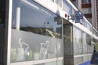 paris2012207.jpg