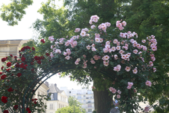 paris201239.jpg