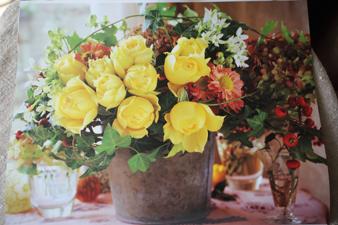 rose20156.jpg