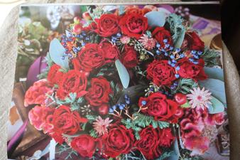 rose20157.jpg