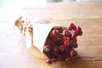 rosehip2.jpg
