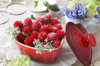 strawberryfield4.jpg