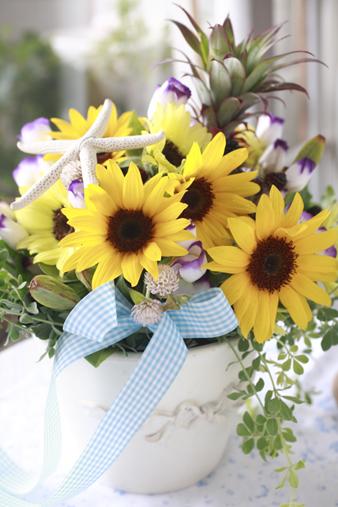 sunflowershell1.jpg