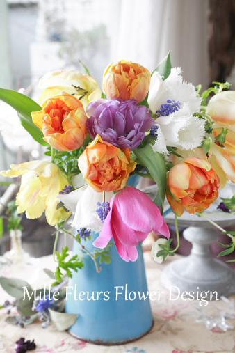 tulipmix2.jpg