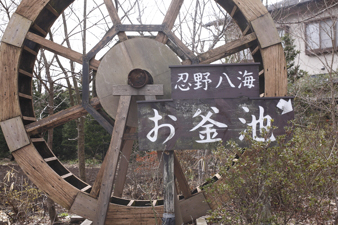 yamanakako53.jpg