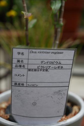 2012nenmatsu90.jpg